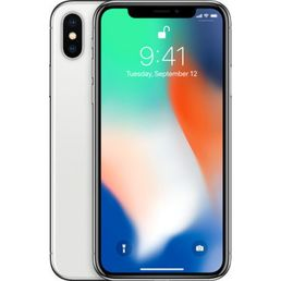 Apple iPhone X 256GB, hopea, käytetty B